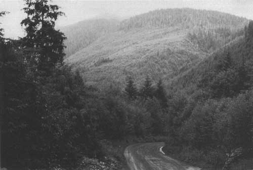 Managing Multiple Uses on National Forests, 1905-1995: A 90