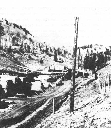Logging Railroads of the Lincoln National Forest, New Mexico (The