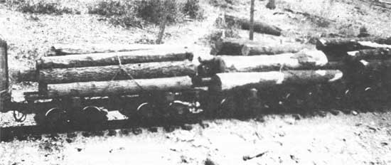 Cull Second Grade Logs HO scale Shay Logging Locomotive Pine Log load Sawmill